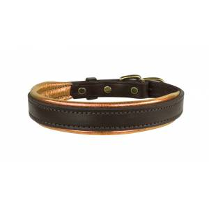 Perri's Padded Leather Dog Collar - Factory Seconds Offer!