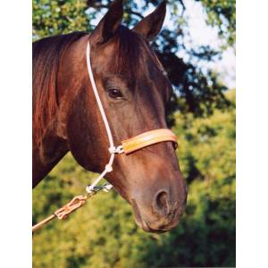 Martin Saddlery Double Rope/Leather Cover Headset Tiedown