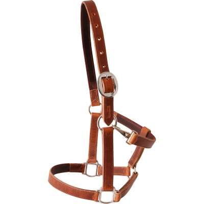 Martin Harness Leather Halter - Brown