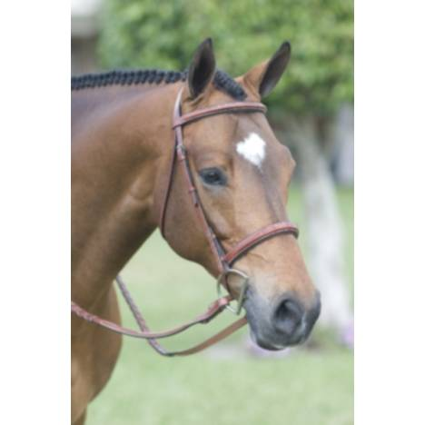Rodrigo Fancy Stitched Padded Wide Noseband Bridle