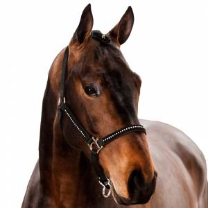 Horze Nylon Halter with  Diamond-Like Stones