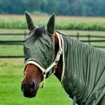 HorZe Fly Masks & Veils