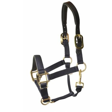 Gatsby Premium Nylon Halter with Padded Leather Overlay