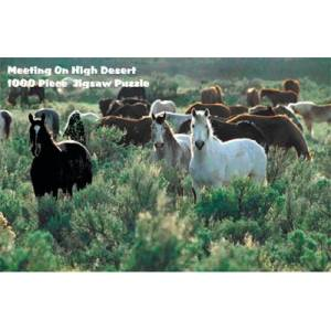 Intrepid Meeting On High Desert Puzzle