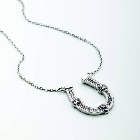 Kelley CZ Encrusted Horseshoe Necklace