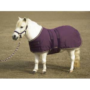 Kensington Turnout Blanket - Mini