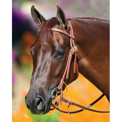Professionals Choice Double Ring Snaffle Bit