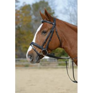 Shires Padded Flash Bridle