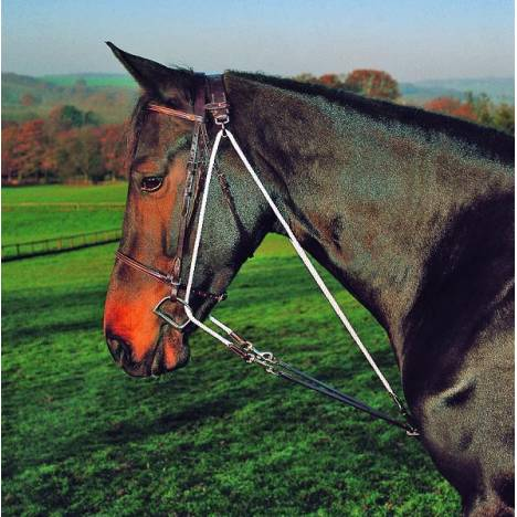 Shires De Gogue Training Martingale