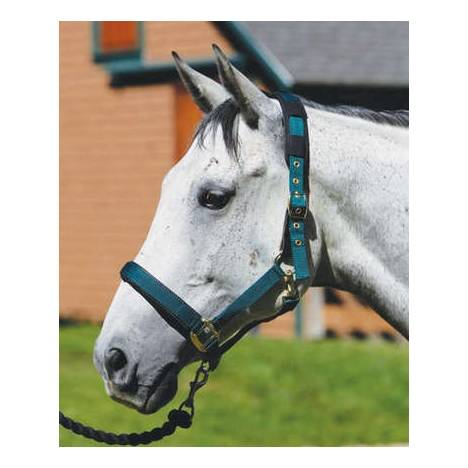 Shires Equestrian Replacement Breakaway Leather Tabs