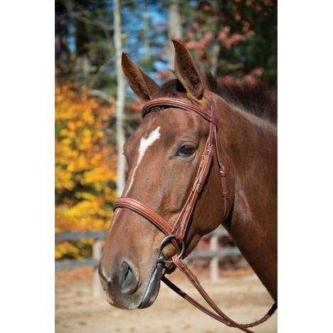 Shires Manchester Snaffle Bridle