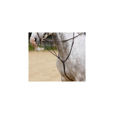 Shires Plain Running Martingale