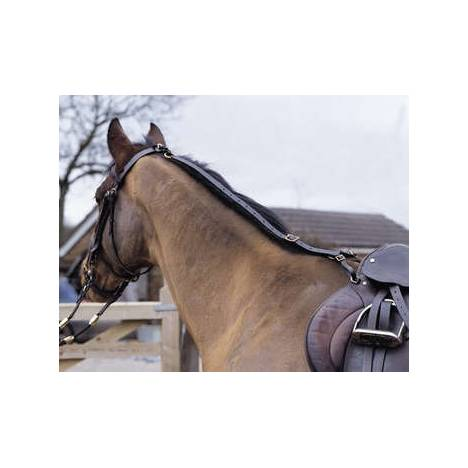 Shires Leather Daisy Rein