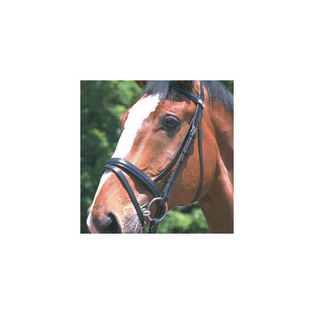 "Stubben 3/4 "" Cheek Raised Flash Noseband Bridle"