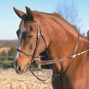 Stubben German Martingale Rein Set