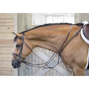 OEQ Elastic Breastplate with Running Attachment