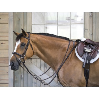 OEQ Flat Standing Martingale