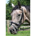Thornhill English Horse Tack