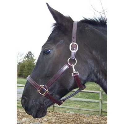 Pro-Trainer Double Stitched Halter