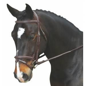 Collegiate Comfort Crown Raised Padded Fancy Stitch Flash Bridle